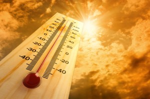 Outdoor workers should know the signs of heat illnesses, including heat rash and heat exhaustion, so they know when to seek treatment to prevent more serious complications.